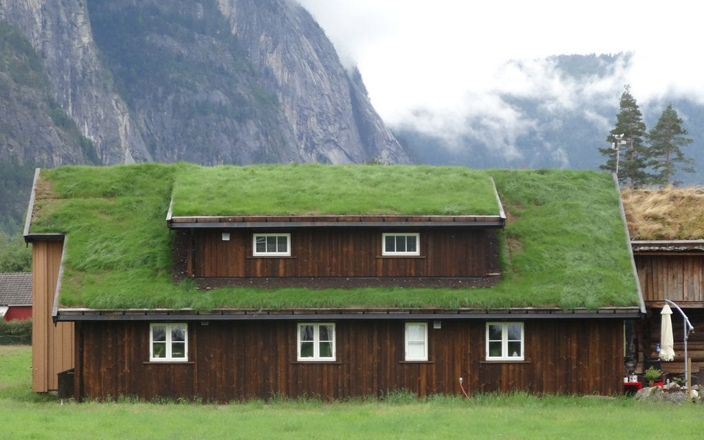 Green Roofing and Its Benefits